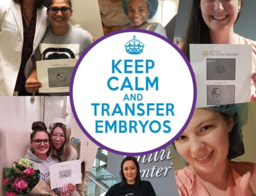 Things to Consider: Embryo Transfer