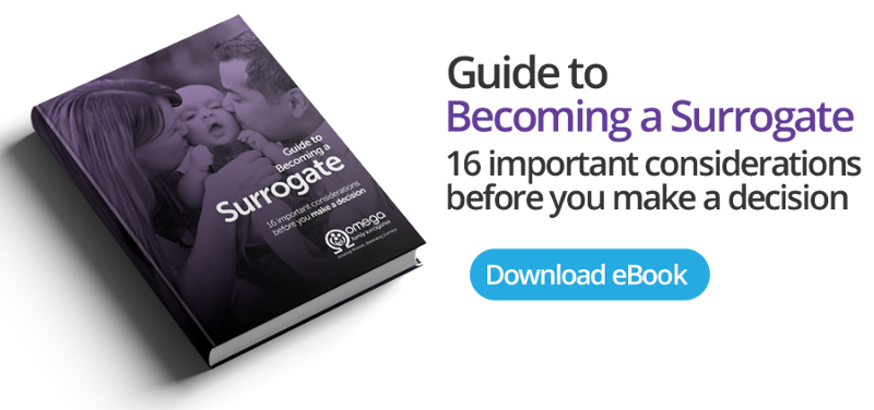 Guide to Becoming a Surrogate eBook