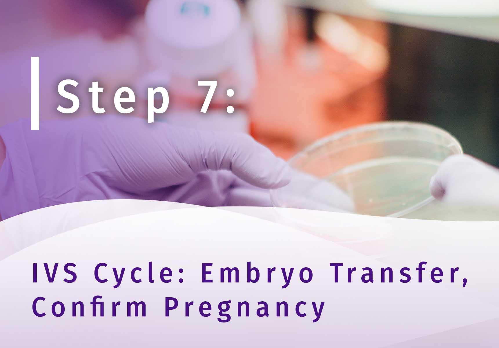 Surrogacy Step 7