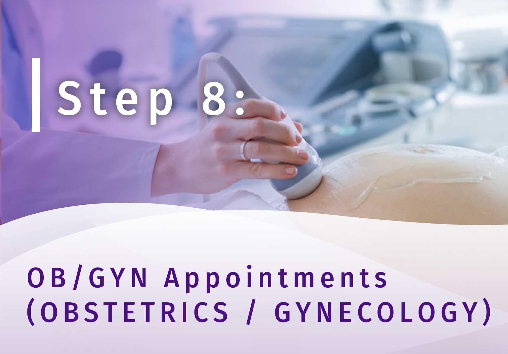 Surrogacy Step 8